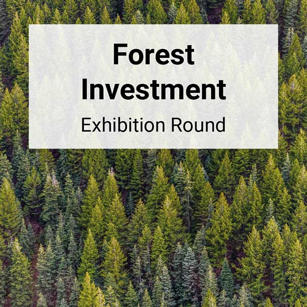forest-investment