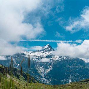 Speed It Up - Alpine Peak Inc