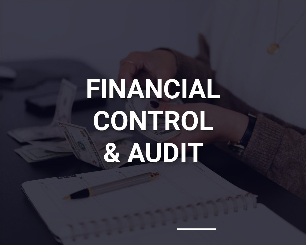 Financial Control and Audit