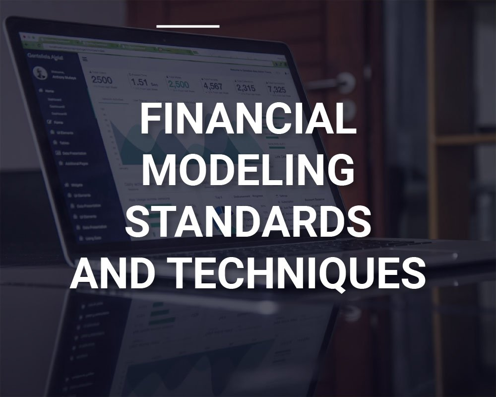Financial Modeling Standards and Techniques